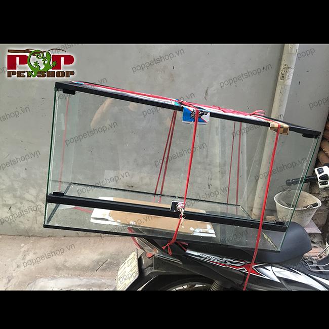 chuồng bò sát nhôm kính lưới