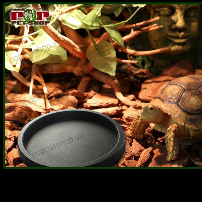 máng ăn rùa cạn bằng nhựa
