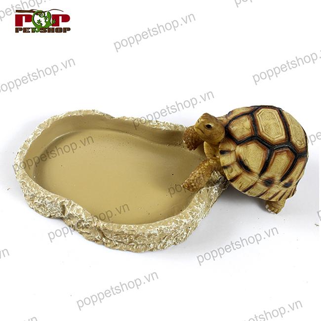 máng ăn rùa cạn
