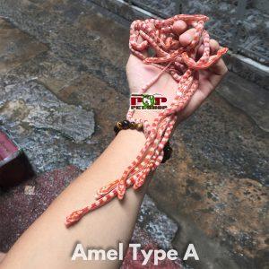 bán rắn ngô baby