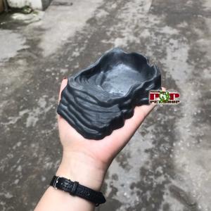 máng nước rùa cạn